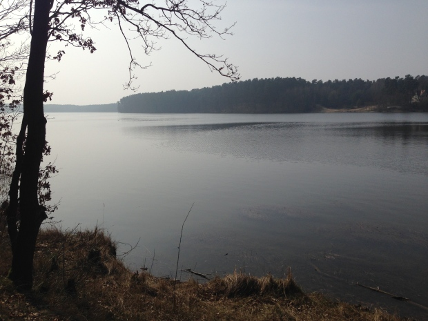Borker See, Brandenburg