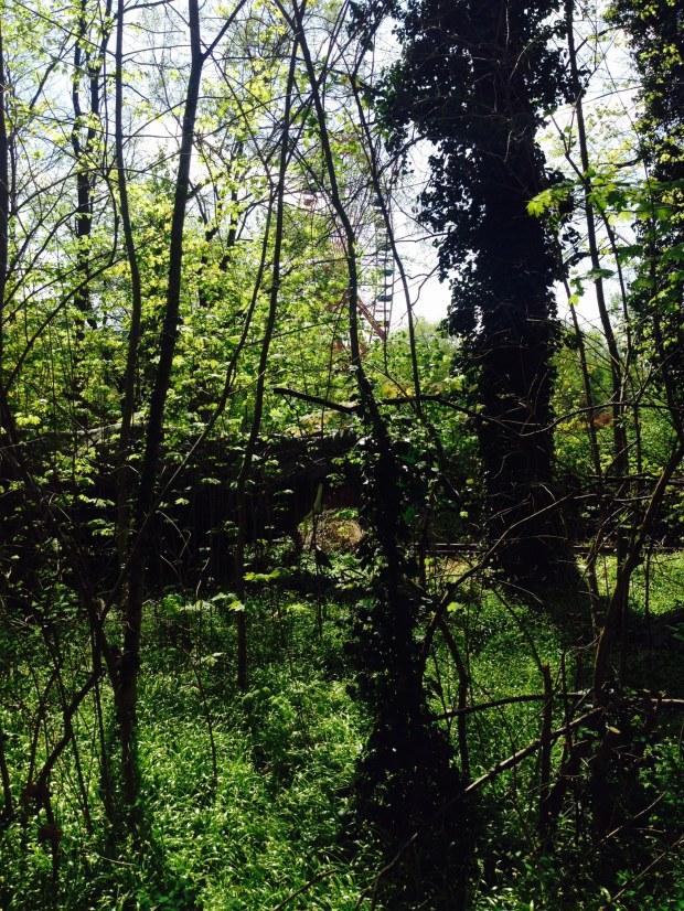 Spreepark Plänterwald Berlin Riesenrad