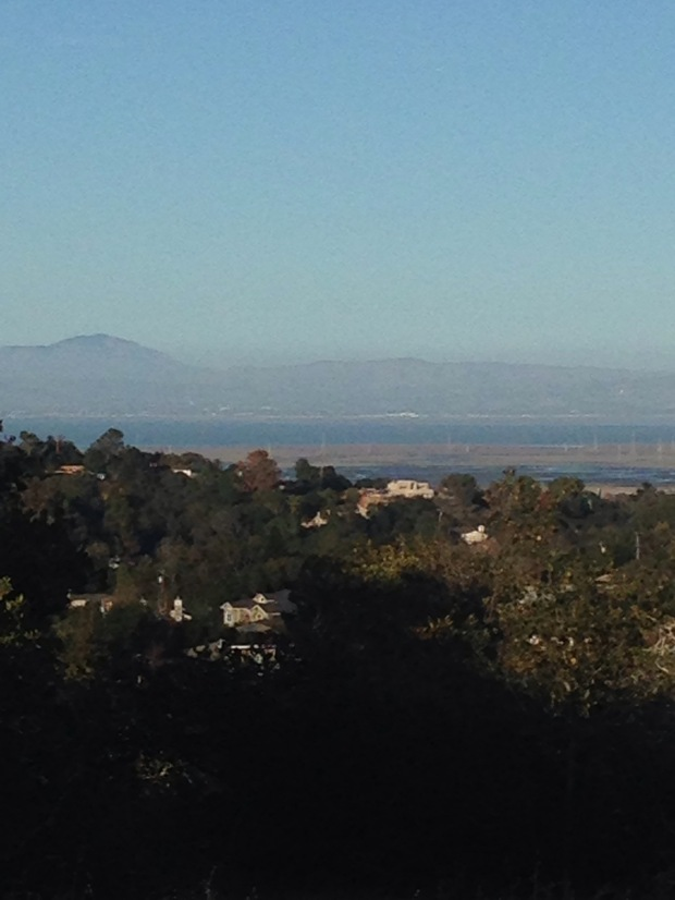 Bay, View, CA, Edgewood