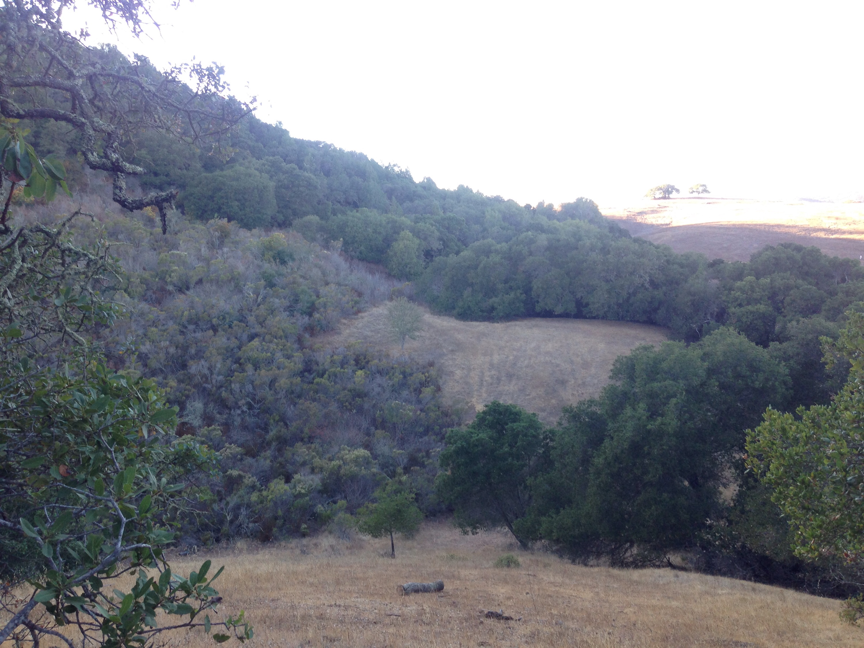 Edgewood, Kalifornien, California, CA, USA, hiking, Wochenendausflug, Hike, wandern, Wanderung