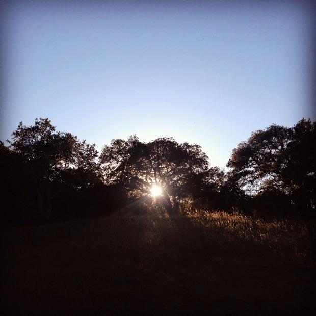 Sunset, Hiking, Wanderung, Wochenende, Ausflugsziel, Hike, Edgewood