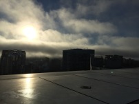 San Francisco, Karl, Fog