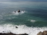 Küste, Pazifik, Wanderweg, Devil's Slide Trail, Ausflug, Ausflugsziel