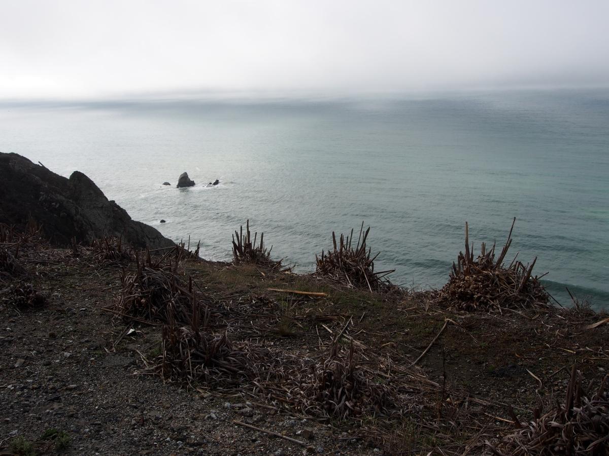 Dürre, Kalifornien, Küste, Pazifik, Meer
