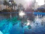 Attraktion, Touristenattraktion, Sehenswürdigkeit, Las Vegas, Secret Garden, Siegfried & Roy, Delfin, springender Delfin