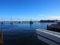 Monterey Bay, California, Whale Watching Tours, Wale, Kalifornien, Boot