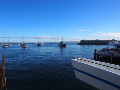 Monterey Bay, California, Whale Watching Tours, Wale, Kalifornien, Boot