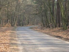Polen, Rundreise, Straßenverhältnisse