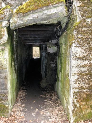 Wolfsschanze, Polen, Rundreise, Bunker