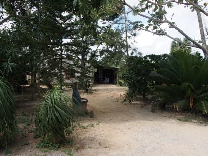 Viñales, Kuba, Bauernhof, Tabak, Farm