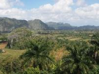 Valle de Viñales, Kuba, Landschaft, Tal