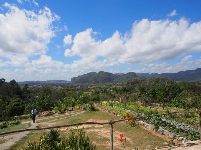 "Landwirschaft, Öko-Finca ""Paraiso"", Vinales, Kuba, Felder, Bauernhof"