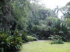 Dschungel, Cueva del Indio