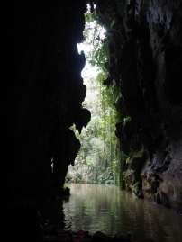 Boot, Cueva del Indio, Dschungel, Kuba