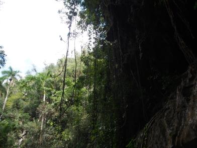 Kuba, Cueva del Indio, Vinales