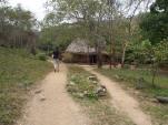 Bauernhaus, Bauer, Wald, Kuba