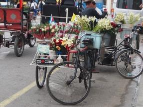 Blumen, Kuba, Fahrrad, Handel