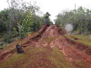 2-stündige Wanderung, Humboldt, Nationalpark, Kuba, Alexander, Alejandro de Humboldt