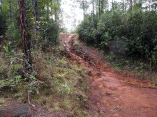 "Nationalpark ""Alejandro de Humboldt"", Alexander von Humboldt Nationalpark, Kuba, Baracoa, Wanderung, Wanderweg, Schwierigkeitsgrad"