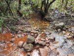 Bach, Wanderung, Trekking, Humboldt, Nationalpark, Kuba