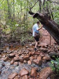 Fluss, Überquerung, Wanderung, Trekking, wandertour, humboldt, nationalpark, kuba