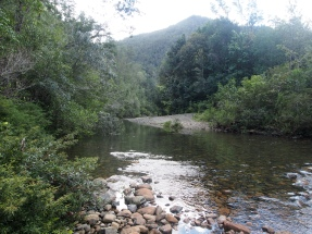 Fluss, Überquerung, Wanderung, Trekking, Tour, Humboldt, Nationalpark, Kuba