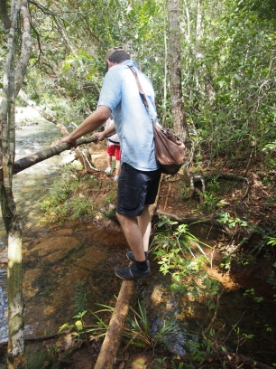 Fluss, Fluß, Überquerung, Baum, Kuba, Nationalpark, Humboldt, Trekking, Wanderung