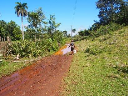 Kuba, Baracoa, Humboldt, Nationalpark, Landschaft, Dschungel, Wasser