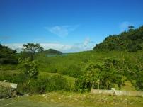 Dschungel, dicht, Wälder, Kuba, Nationalpark, Humboldt