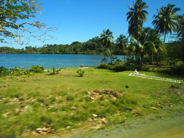 unter palmen, kuba, sightseeing, touristenattraktion