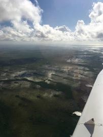 Florida, Florida Keys, Key West, fliegen, selber fliegen, Privatpilot, PPL, VFR, IFR, Piper, Privatflieger, Ausflug, Ausflugsziel, Wochenendausflug, Wochenendtrip, Sehenswürdigkeit, Sehenswert, Touristenattraktion, Everglades, Sumpf