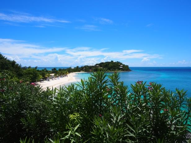 Karibik, Antigua, Barbuda, Karibisches Meer, Reisebericht, Erfahrungsbericht, Reiseerfahrung, Sehenswert, Sehenswürdigkeit, was machen, Antillen, Insel, tropisch, Baumfrösche, Frösche, Moskitos, Cocobay, Karibisches Meer