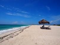 Karibik, Antigua, Barbuda, Karibisches Meer, Reisebericht, Erfahrungsbericht, Reiseerfahrung, Sehenswert, Sehenswürdigkeit, was machen, Antillen, Insel, tropisch, Baumfrösche, Frösche, Moskitos, Cocobay, Karibisches Meer, Pink Sand Beach, Pink, Barbuda