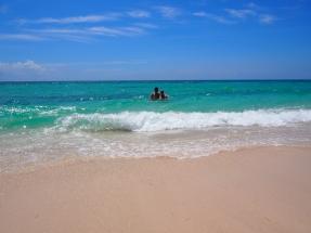 Pink Sand Beach, Karibik, Antigua, Barbuda, Karibisches Meer, Reisebericht, Erfahrungsbericht, Reiseerfahrung, Sehenswert, Sehenswürdigkeit, was machen, Antillen, Insel, tropisch, Baumfrösche, Frösche, Moskitos, Cocobay, Karibisches Meer