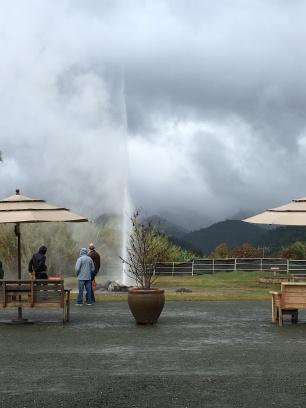 Napa Valley, Wein, Weinprobe, Ausflug, Ausflugsziel, Wochenendtrip, Ausflugstipp, Geyser, Wein Tasting, Geyser, Old Faithful, Calistoga, California