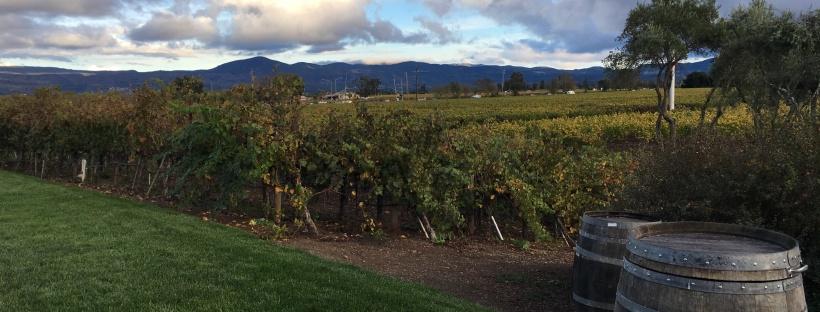 Napa Valley, Wein, Weinprobe, Ausflug, Ausflugsziel, Wochenendtrip, Ausflugstipp, Geyser, Wein Tasting