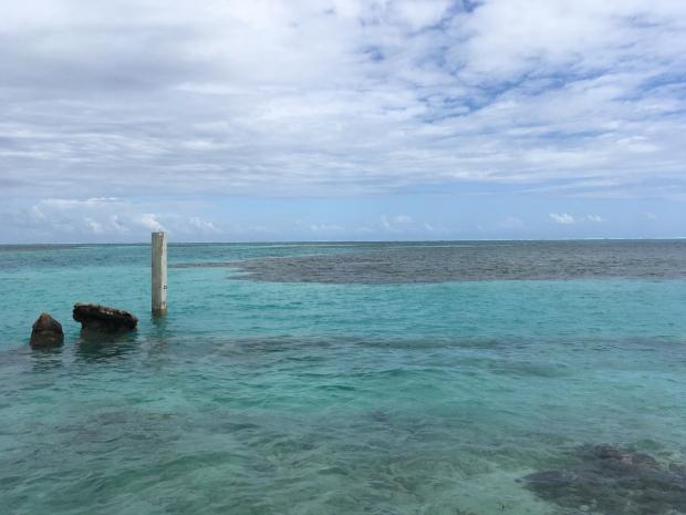 Belize, Lateinamerika, Zentralamerika, Südamerika, Einsteigerland, Anfänger, Einsteiger, Caye Caulker, Meer, Korallenriff, Sonne, was erwartet mich, was kann man erwarten, reisen, reise, ausflug, Reisetipp, schnorcheln
