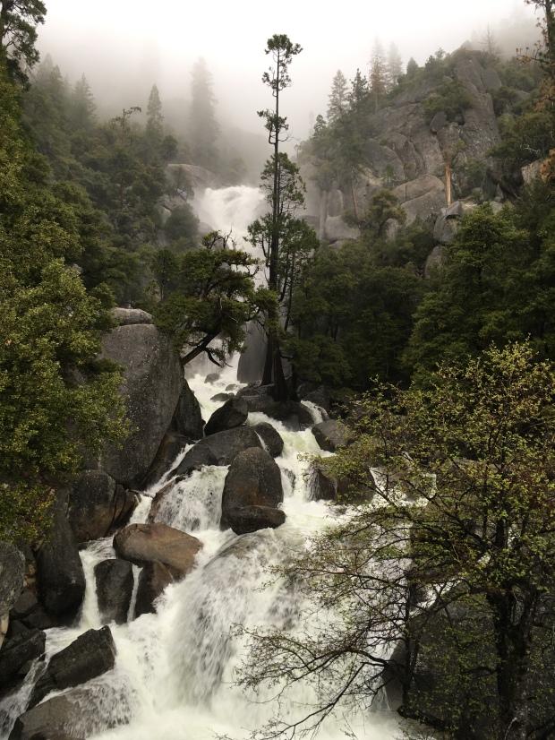 Wasserfall, Yosemite, Eingang, Big Oak Flat, Westen, Kalifornien