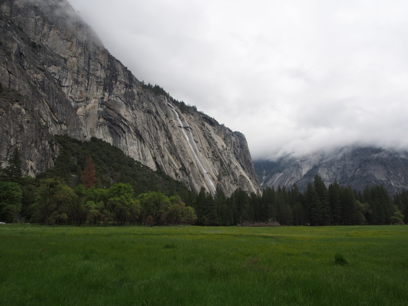 Yosemite Valley, Nationalpark, USA, Kalifornien, Natur
