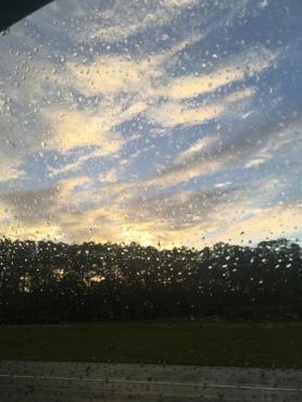 Florida im Regen.